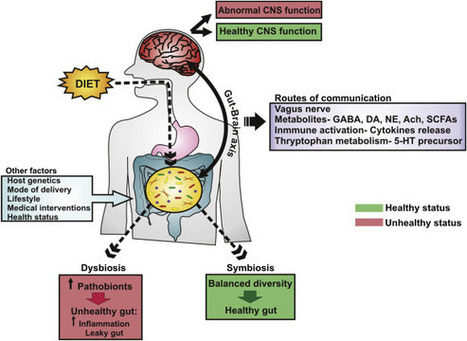 Food for thought: The role of nutrition in the microbiota-gut–brain axis | Systems biology and bioinformatics | Scoop.it