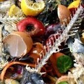 18 Little-Known Facts That Will Motivate You to Cut Back on Food Waste | The New Black Gold... | Scoop.it