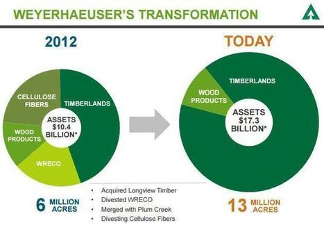 Weyerhaeuser: Not The Same Company Anymore | Timberland Investment | Scoop.it