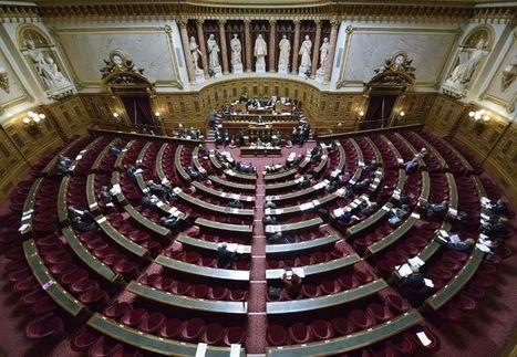 Des sénateurs de gauche s'insurgent contre le maintien de l ... - Libération | Laurence Rossignol - Sénat | Scoop.it