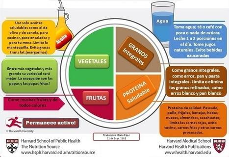 Pirámide Alimenticia obsoleta frente a nuevos criterios de alimentación saludable - VeoVerde   Mens sana in corpore sano   Scoop.it