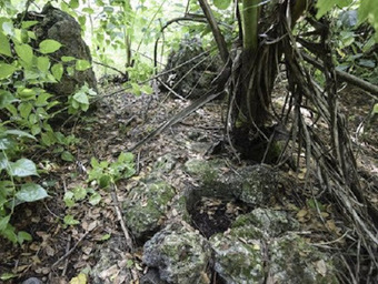 Dig offers clues about Guam's ancient residents | The Archaeology News Network | Kiosque du monde : Océanie | Scoop.it