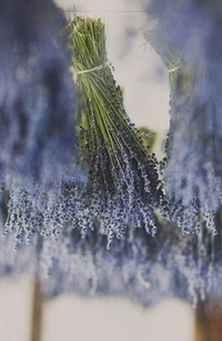 5 Ideas for Late Summer Decorations Using Lavender - Lavenderworld | Lavender | Scoop.it
