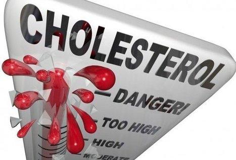 Cholesterol cao | Trao đổi | Scoop.it