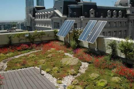 La moda de los jardines verticales - Apertura | Jardines Verticales y azoteas verdes. | Scoop.it