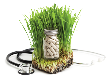 Remain Healthy with Holistic Health Services | Renew You Naturopathic & Massage Therapy | Scoop.it