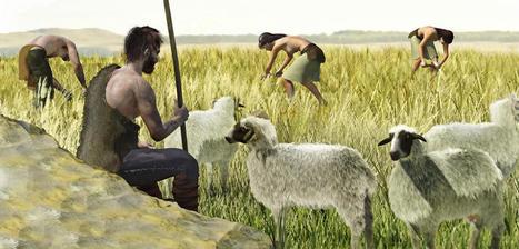 Il était une fois l'agriculture - CNRS | Revue de tweets | Scoop.it