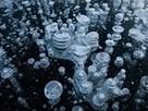 bulles de méthane  -- National Geographic Photo of the Day | Hurtigruten Arctique Antarctique | Scoop.it