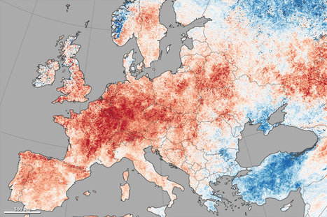 Europe and Pacific Northwest Face Record Heat : Image of the Day   Erba Volant - Applied Plant Science   Scoop.it