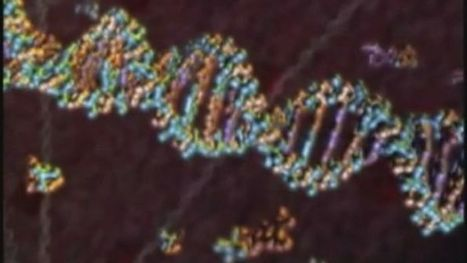 Leading science writer refutes DNA 'tale' - ABC Online | Environmental Science Communication | Scoop.it