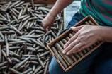 Workers Produce Handmade Cigars In Century Old Factory - Getty Images | Wooden Smoke Pipe | Scoop.it