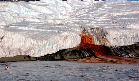 "Extreme Weirdness: Antarctica's ""Blood Falls"" | Antarctica | Scoop.it"