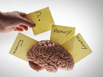 "Alzheimer's disease ""jumps"" across brain cells to spread"