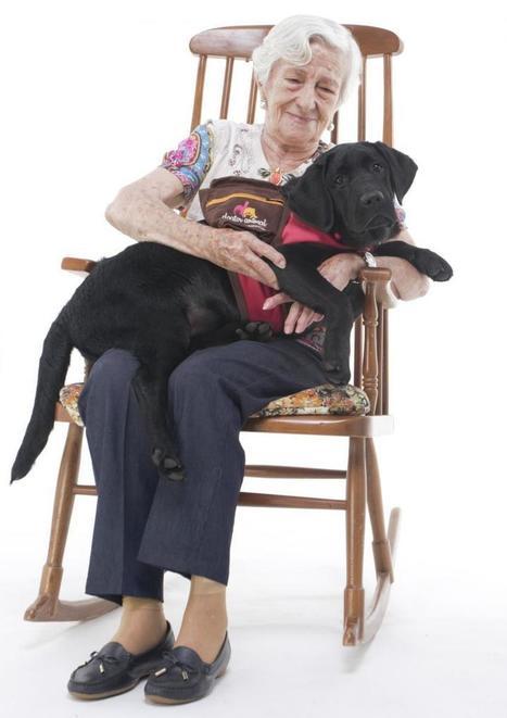 Un perro de terapia ¿nace o se hace? | I didn't know it was impossible.. and I did it :-) - No sabia que era imposible.. y lo hice :-) | Scoop.it