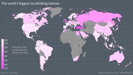 Map: The Countries That Drink the Most Tea | Geography of food | Scoop.it