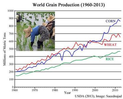 La production agricole mondiale continue d'augmenter, malgré des ... - Contrepoints   Agriculture : économie et développement.   Scoop.it