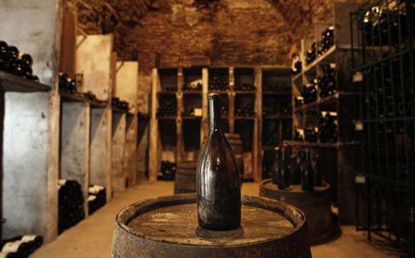 Le vin le plus vieux du monde a 1650 ans! | Carpediem, art de vivre et plaisir des sens | Scoop.it
