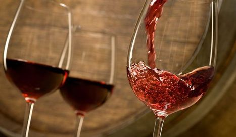 Moderate wine consumption may benefit kidneys | Quirky wine & spirit articles from VINGLISH | Scoop.it