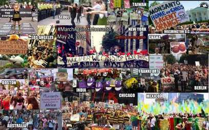 Fifty-two countries join 'March against Monsanto' | Sustain Our Earth | Scoop.it