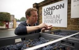 London Cru, se aprire una Urban Winery nel centro di Londra è tradire il territorio | vino e dintorni | Scoop.it