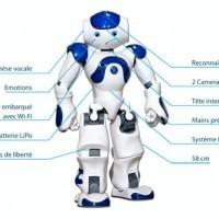 nao--lespoir-de-robots-domestiques-pour-aider-les-handicapes | a-la-une | LYFtv - Lyon | Scoop.it