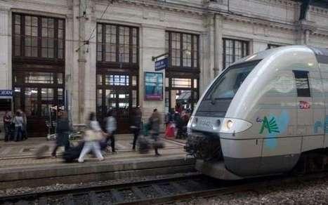 SNCF: gros couac pour le service Accessibilité et handicap | Gestion des risques et accessibilité | Scoop.it