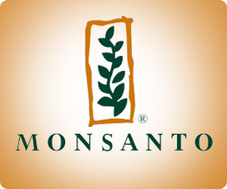 Monsanto-Syngenta Mega-Merger Would Drive More Deals   Grain du Coteau : News ( corn maize ethanol DDG soybean soymeal wheat livestock beef pigs canadian dollar)   Scoop.it