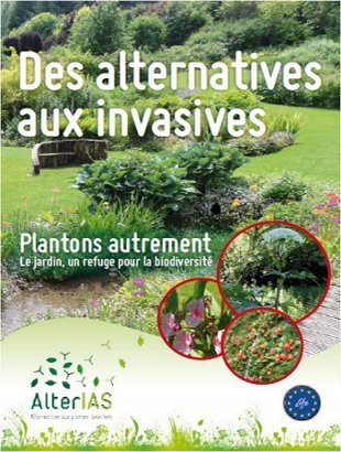 Les plantes alternatives | pour mon jardin | Scoop.it