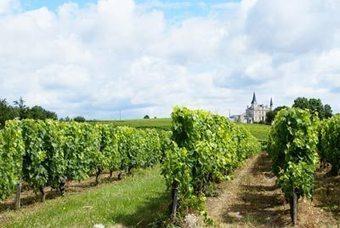 Bordeaux Without TheBloodshed | Intoxicology Report by Chris Kassel | Planet Bordeaux - The Heart & Soul of Bordeaux | Scoop.it