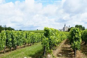 No B.S in the Bordeaux Superieur Appellation