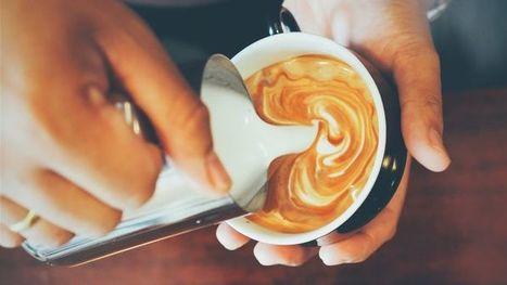 Kvalitetscykler og caffe latte: Cykelcaféer skyder op   Afsætning IBC HHX   Scoop.it