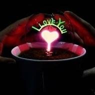 Đèn hoa lửa I Love You neight light cảm ứng   Quà tặng lưu niệm   Scoop.it