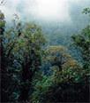 ASIMET: Medio Ambiente | Interesante | Scoop.it