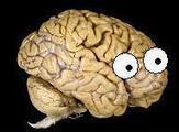 Neuroskeptic: The Case of the Phantom Phantom Finger | cognition | Scoop.it
