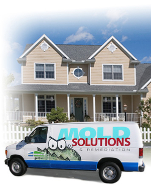 Mold Remediation St Louis | release | Scoop.it