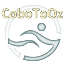 Logo Header For CoboToOz | Infographics Only | Silicone Swimming Caps | Scoop.it