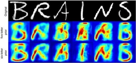 El ordenador que lee a través del cerebro | CienciaHoy | Scoop.it