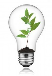 Phil McKinney » 4 Steps To Grow Your Innovation Skills | Co-innovation | Scoop.it