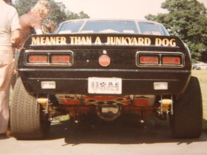 Meaner Than A Junkyard Dog | Kitsch | Scoop.it
