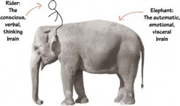Motivating the Elephant: Persistence in Education | Pearson Learning Solutions | eLearning, social media | Scoop.it