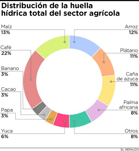 La agricultura consume el 70% del agua en el mundo   Agricultura   Scoop.it