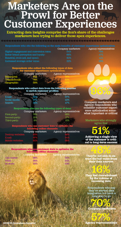 Marketers Are on the Prowl for Better Customer Experiences Infographic | Omnicanal, web-to-store, customer experience | Scoop.it