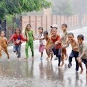 Some children are enjoy this rain | 2 dogs are very happy | Scoop.it