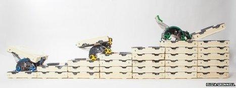"Termites inspire robot builders | L'impresa ""mobile"" | Scoop.it"