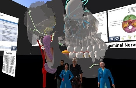 The University of Western Australia in Second Life: University of Kentucky Collaboration with UWA School of Anatomy, Physiology and Human Biology | iEduc | Scoop.it