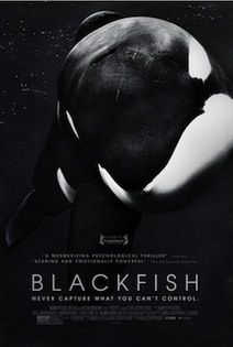 """Blackfish"" Will Air on CNN Tomorrow at 6pm Pacific/9pm Eastern. Watch and Tweet With Us! 