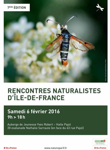 7es Rencontres Naturalistes d'Île-de-France   Variétés entomologiques   Scoop.it
