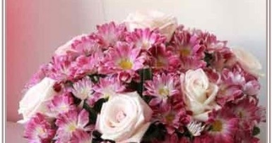 Congratulation-Occasions Flowers in Egypt | Online Florist in Egypt | Scoop.it