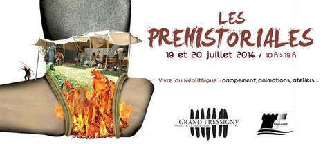 Les Préhistoriales - Vivre au Néolithique au Grand Pressigny   My ...   Mégalithismes   Scoop.it