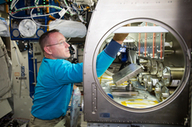 NASA Completes Rodent Research-1 Operations on the International Space Station | Space In Cyberspace | Scoop.it